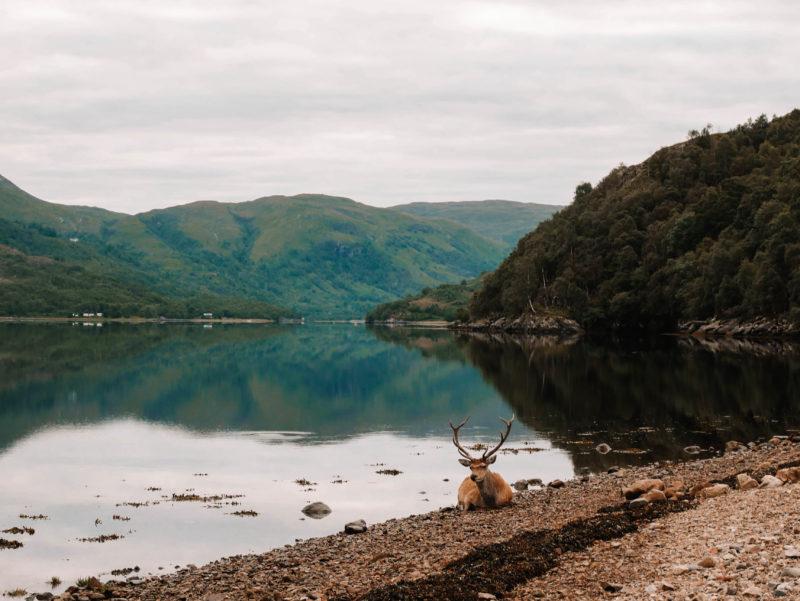 SCOTLAND CAMPER VAN TRIP 3 DAY MULL OBAN & GLENCOE ITINERARY